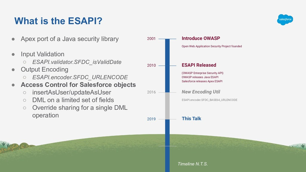 What is the ESAPI? Introduce OWASP Open Web App...