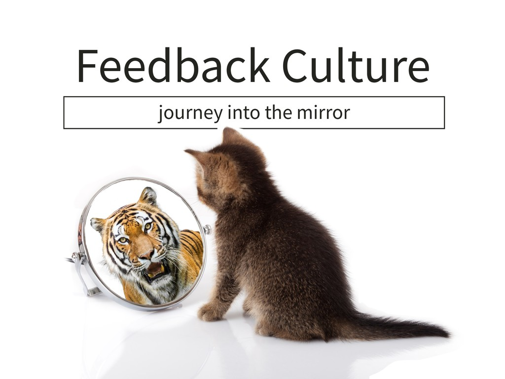 Feedback Culture journey into the mirror