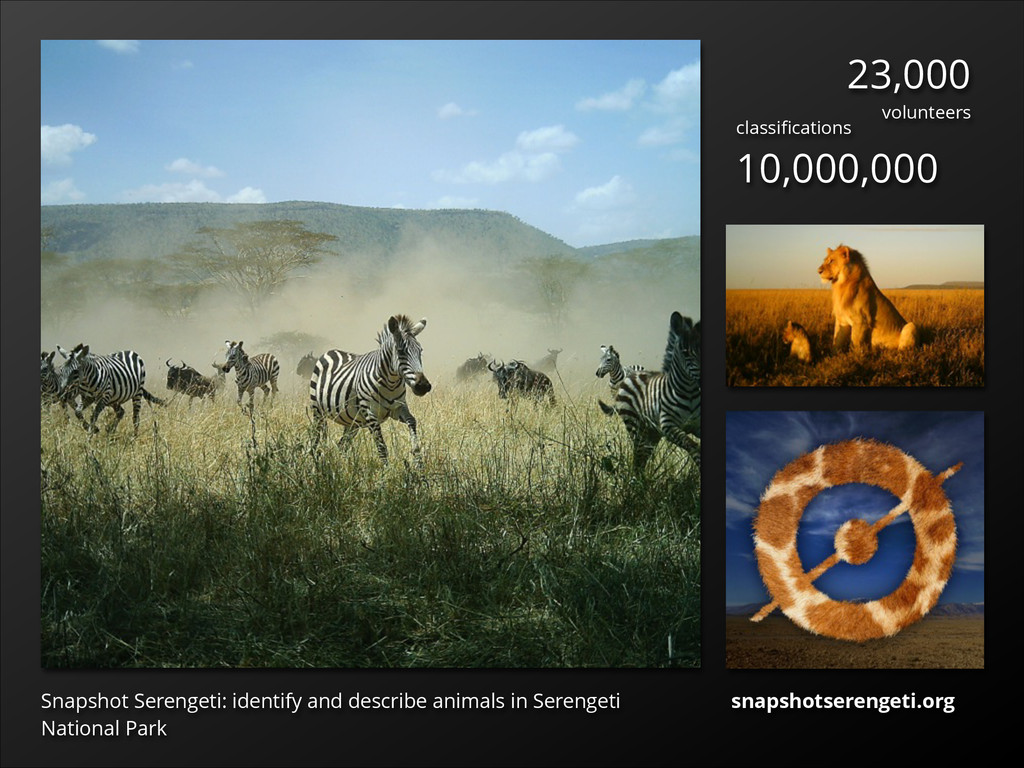 Snapshot Serengeti: identify and describe anima...