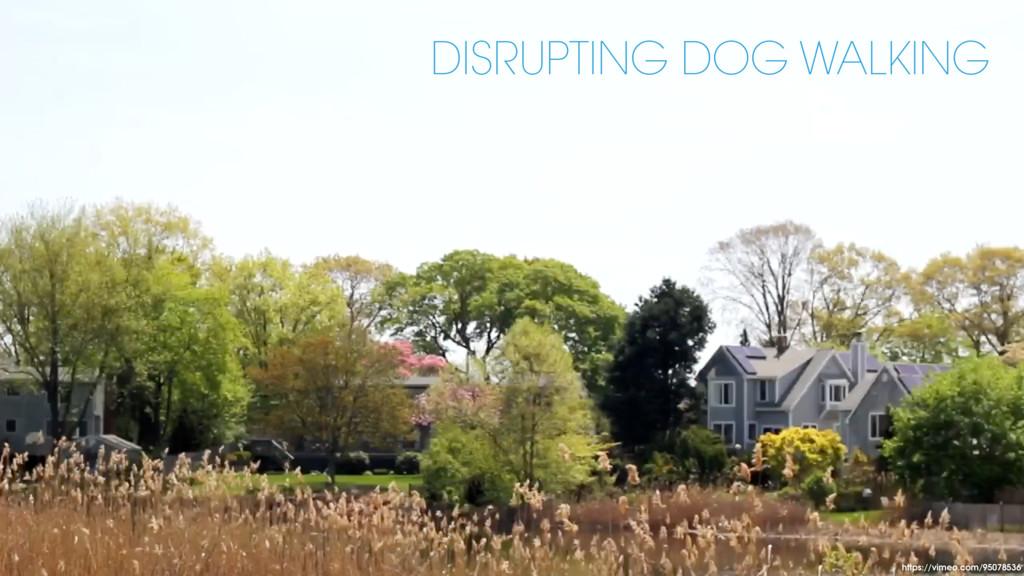 https://vimeo.com/95078536 DISRUPTING DOG WALKI...