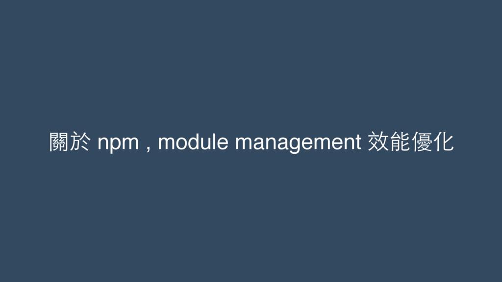 關於 npm , module management 效能優化