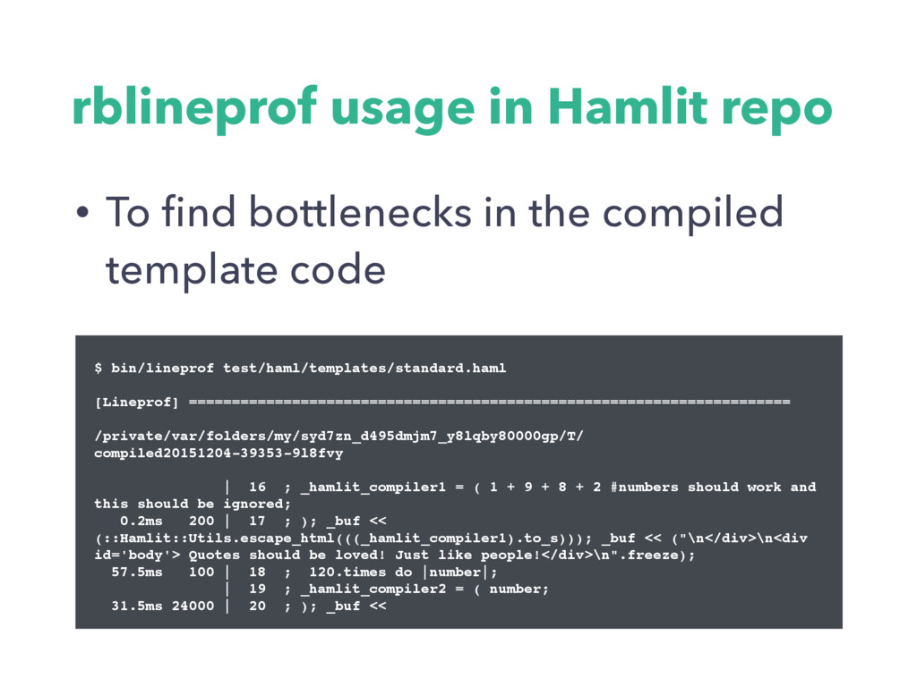 rblineprof usage in Hamlit repo • To find bottle...