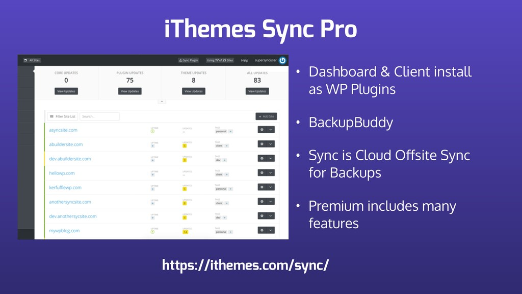 iThemes Sync Pro • Dashboard & Client install a...