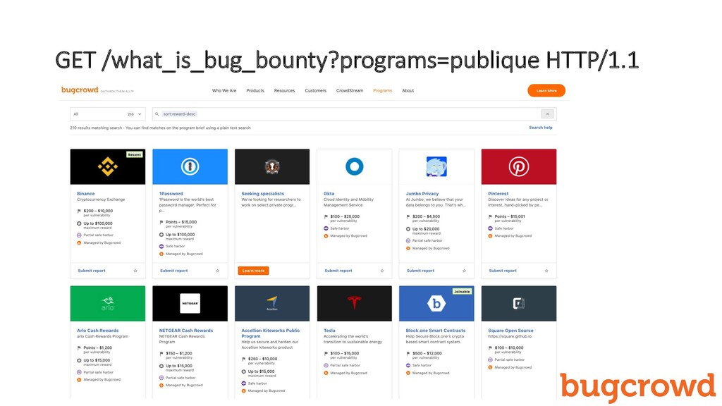 GET /what_is_bug_bounty?programs=publique HTTP/...