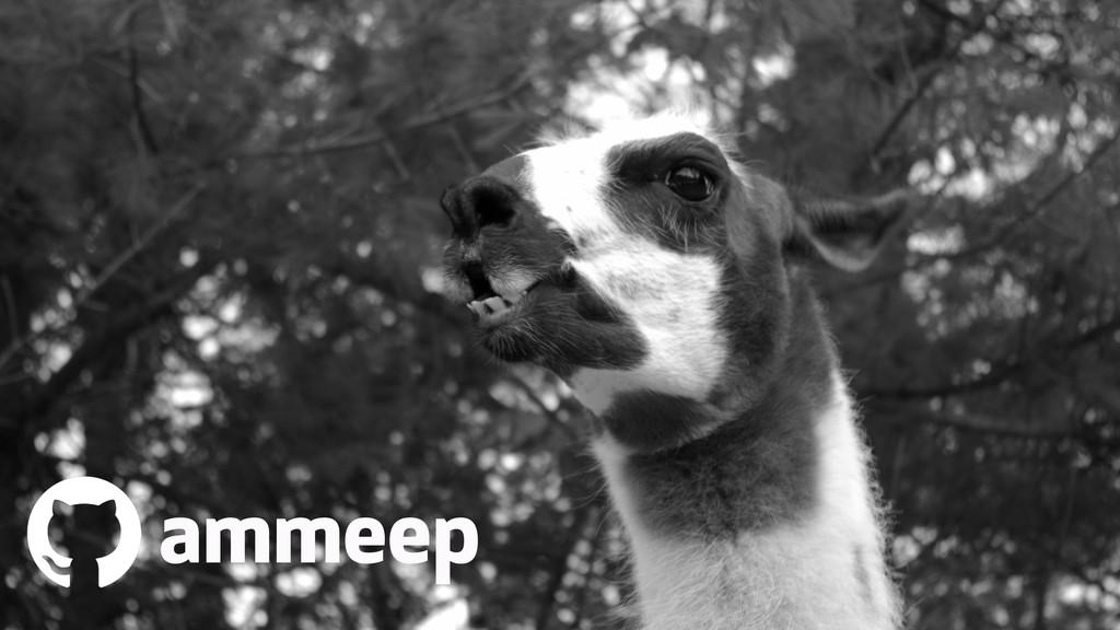 ammeep