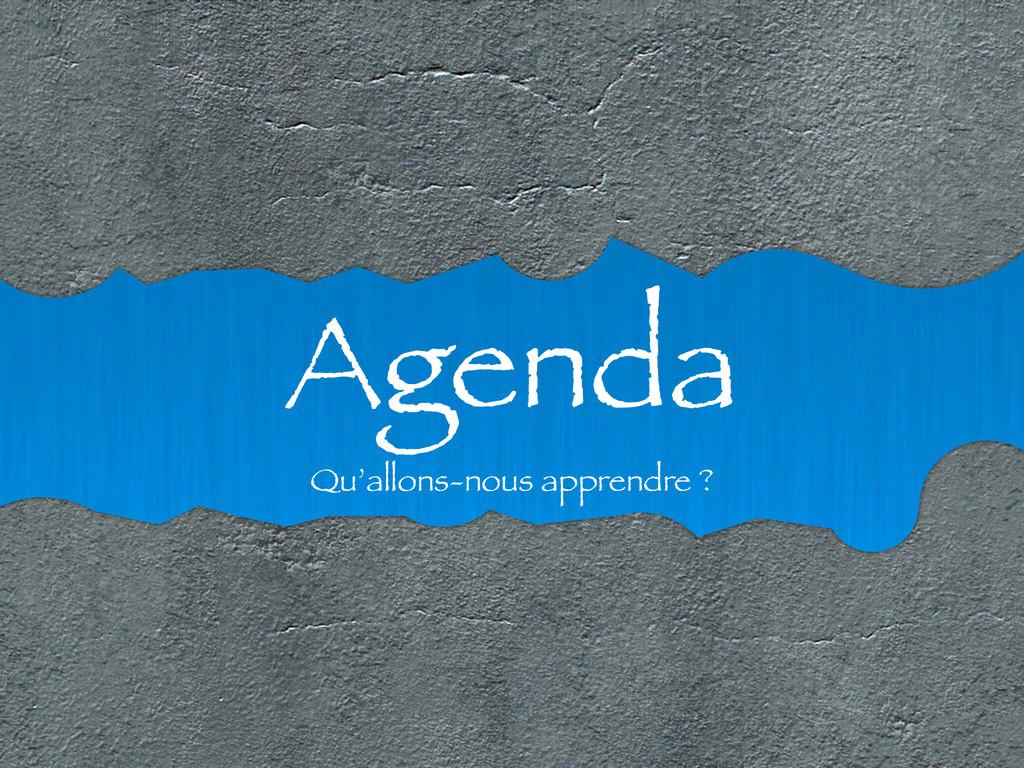 Agenda Qu'allons-nous apprendre ?