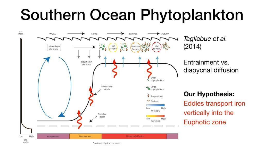 Southern Ocean Phytoplankton Tagliabue et al. (...