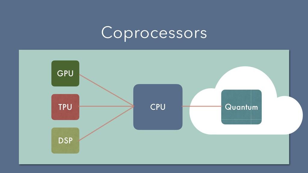 Coprocessors CPU GPU TPU DSP Quantum