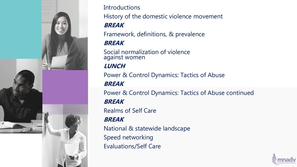 Introductions History of the domestic violence ...