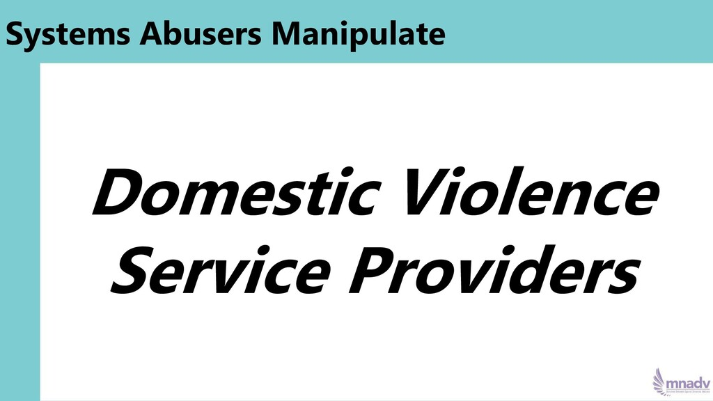 Systems Abusers Manipulate Domestic Violence Se...