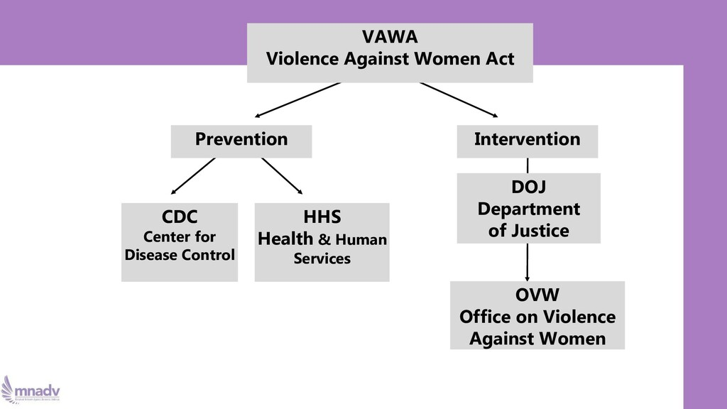 VAWA Violence Against Women Act Prevention Inte...