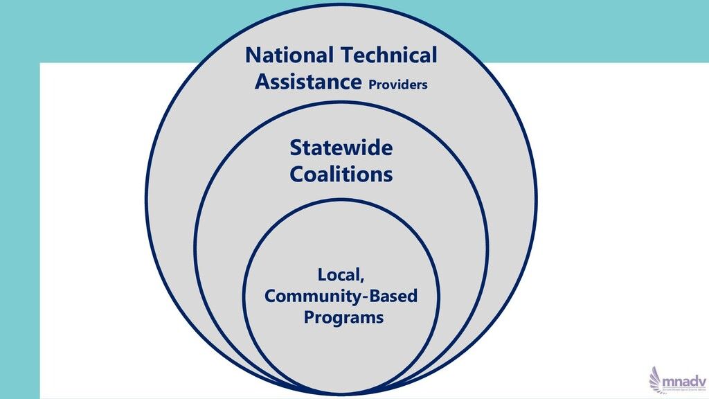 National Technical Assistance Providers Statewi...