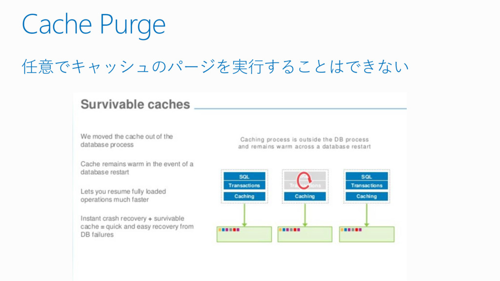 Cache Purge 任意でキャッシュのパージを実行することはできない