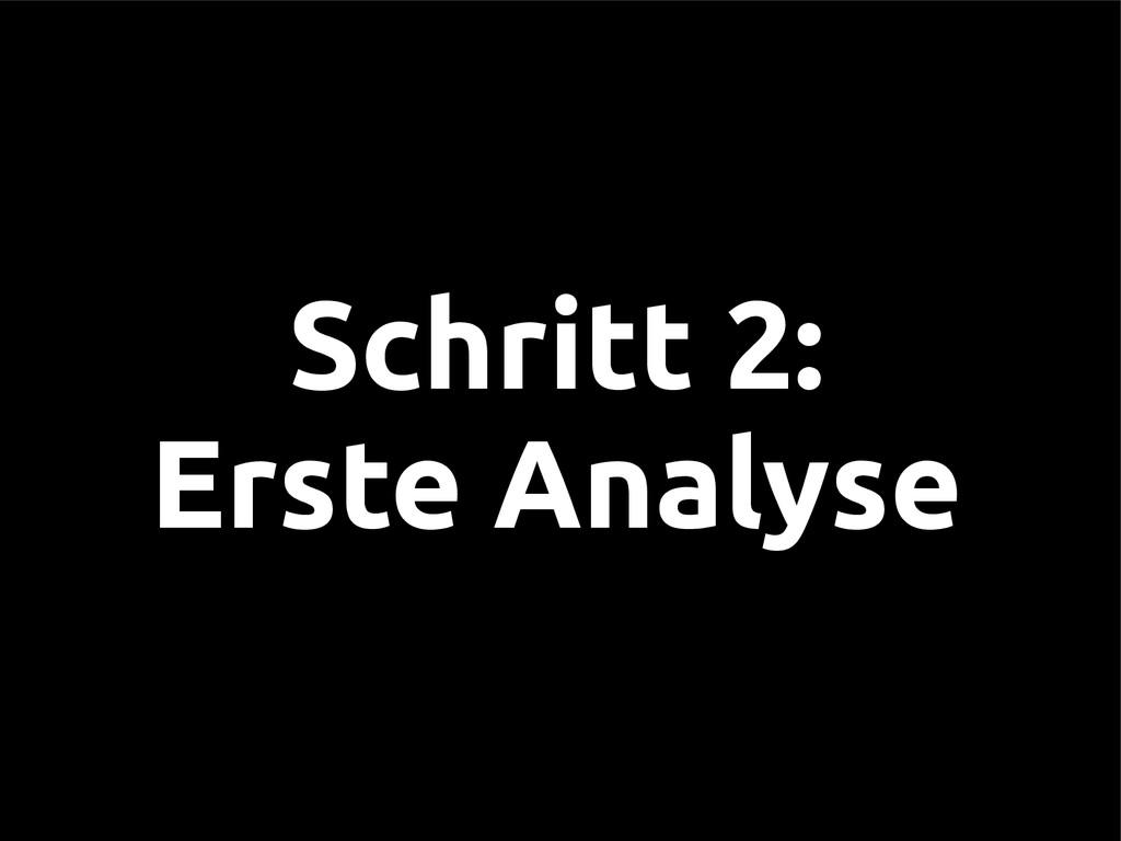 Schritt 2: Erste Analyse