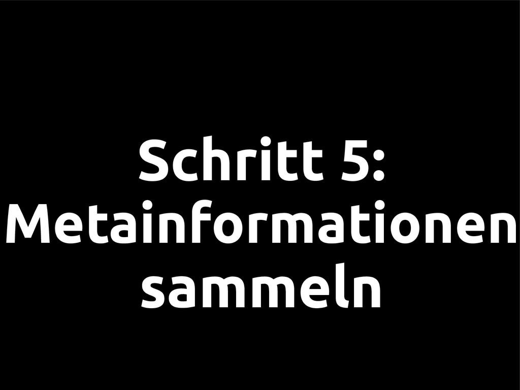 Schritt 5: Metainformationen sammeln