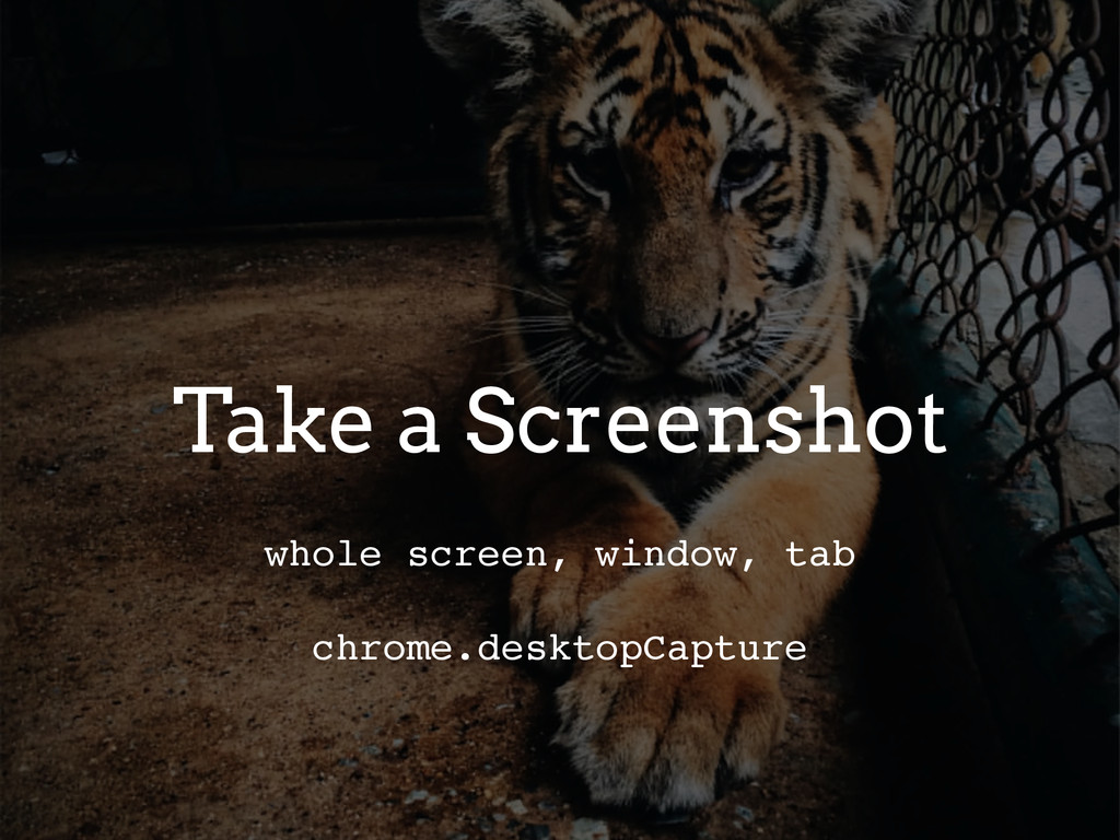 Take a Screenshot whole screen, window, tab chr...
