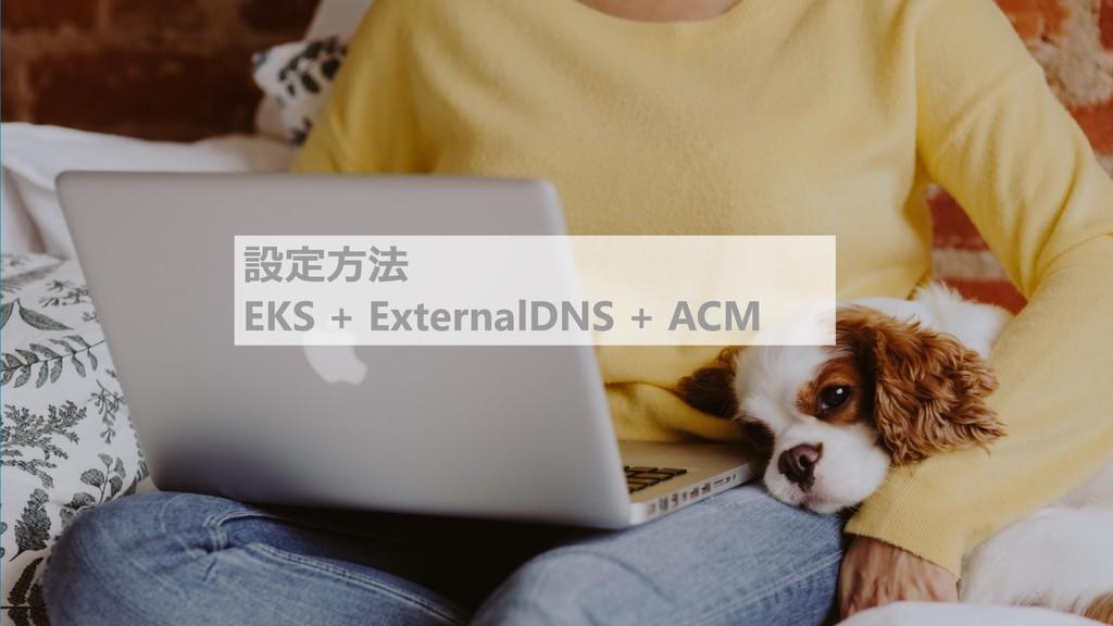 11 設定方法 EKS + ExternalDNS + ACM