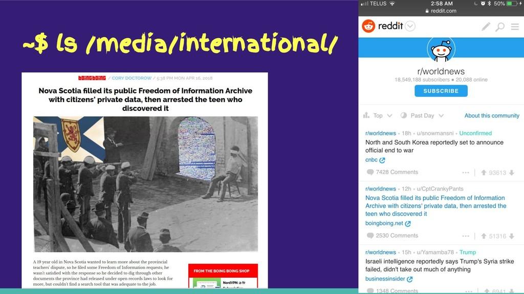 ~$ ls /media/international/
