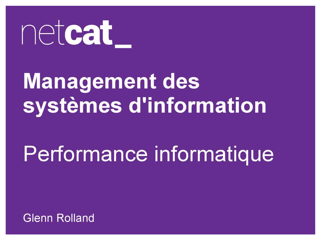 Management des systèmes d'information Performan...