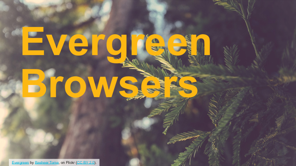 Evergreen by Basheer Tome, on Flickr (CC BY 2.0...