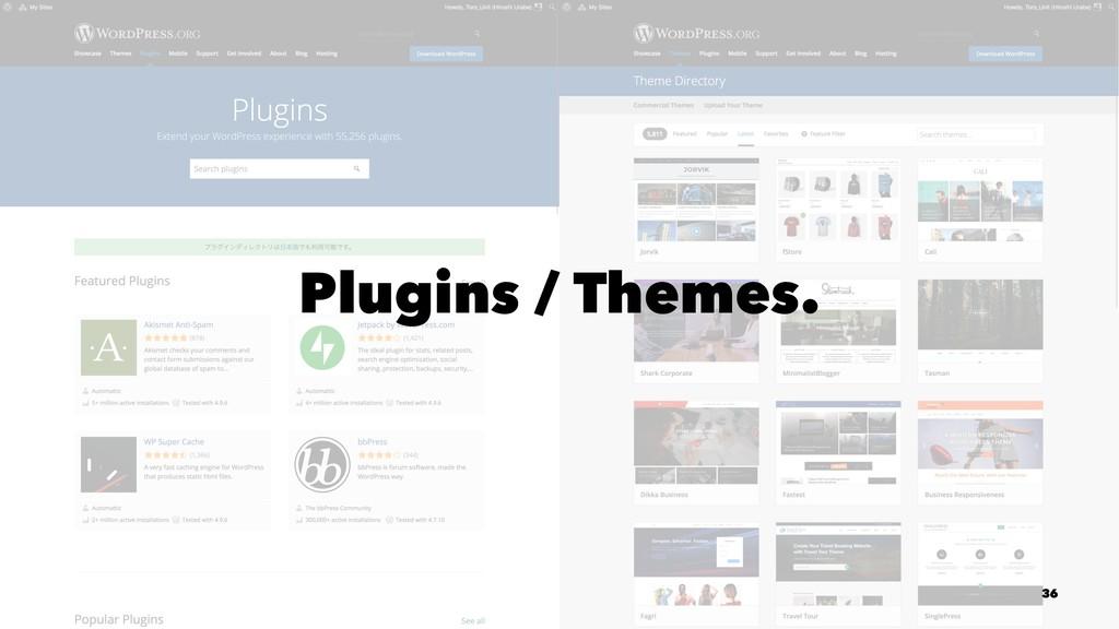 Plugins / Themes. 36
