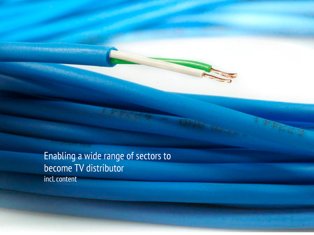 Enabling a wide range of sectors to become TV d...