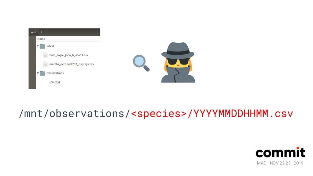MAD · NOV 22-23 · 2019 /mnt/observations/<speci...