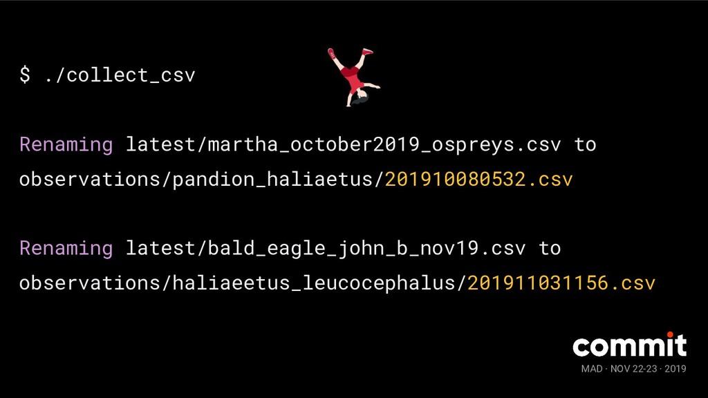 MAD · NOV 22-23 · 2019 $ ./collect_csv Renaming...