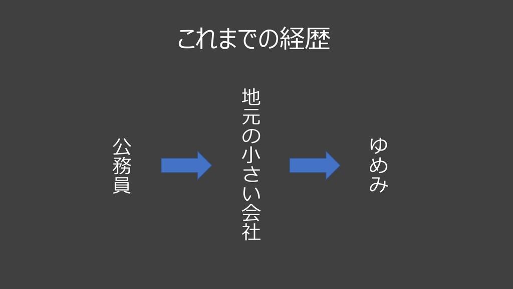 これまでの経歴 公 務 員 地 元 & ⼩ ( ) 会 社 , - .
