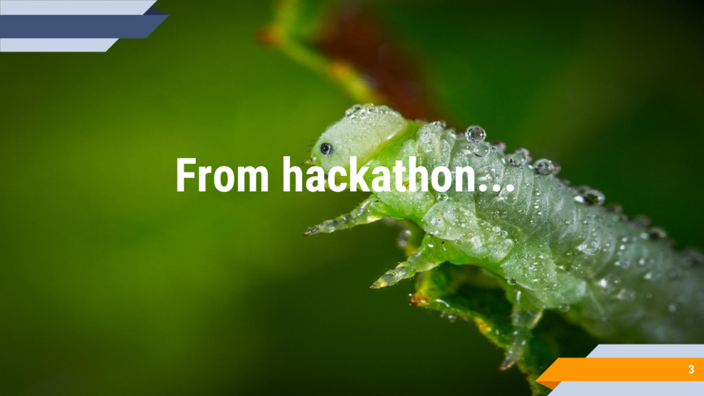 3 From hackathon...
