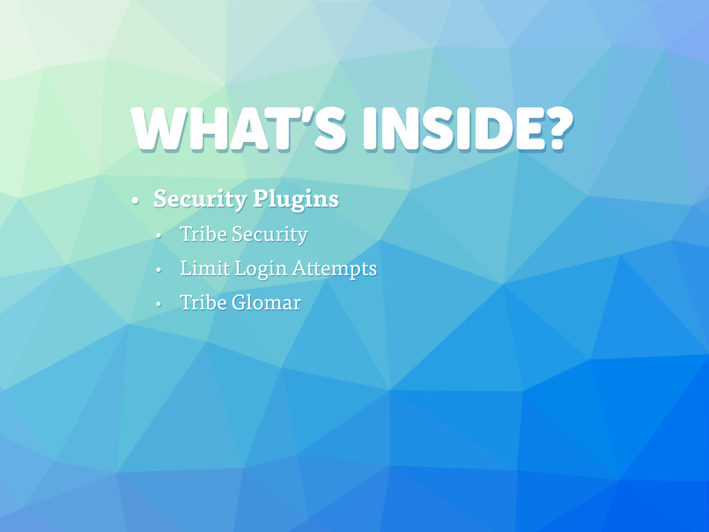 WHAT'S INSIDE? • Security Plugins • Tribe Secur...