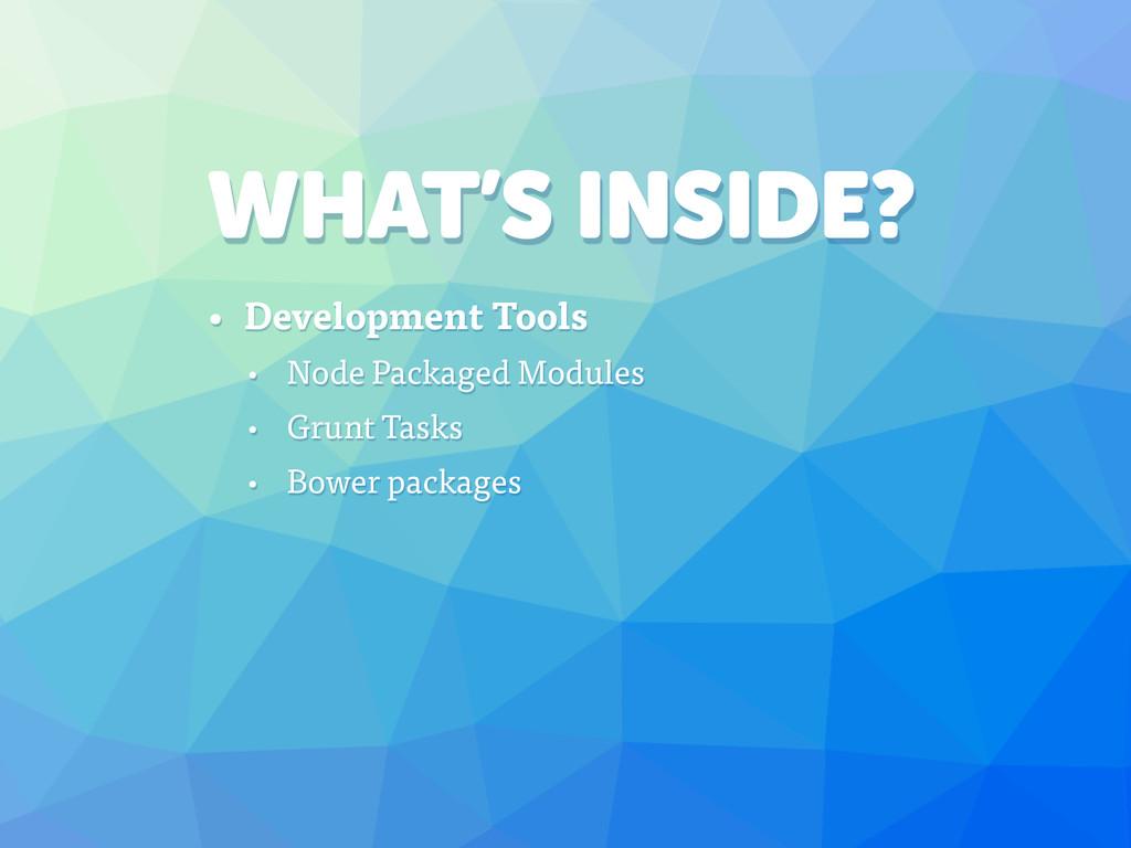 WHAT'S INSIDE? • Development Tools • Node Packa...