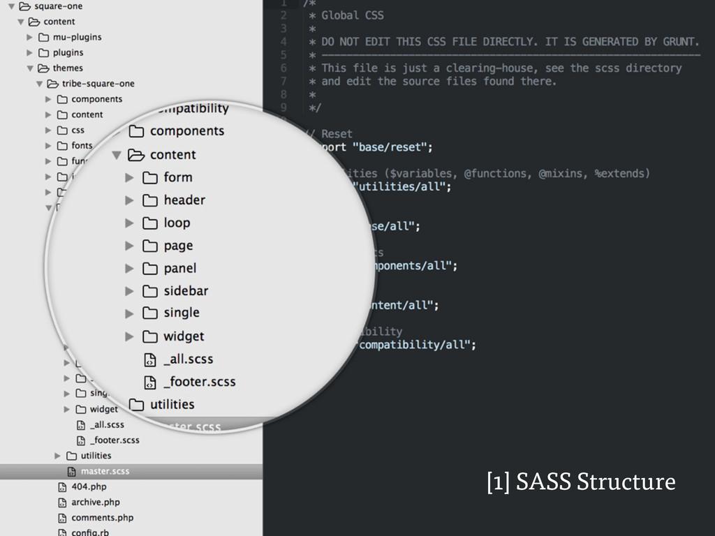 [1] SASS Structure