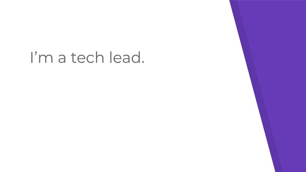 I'm a tech lead.