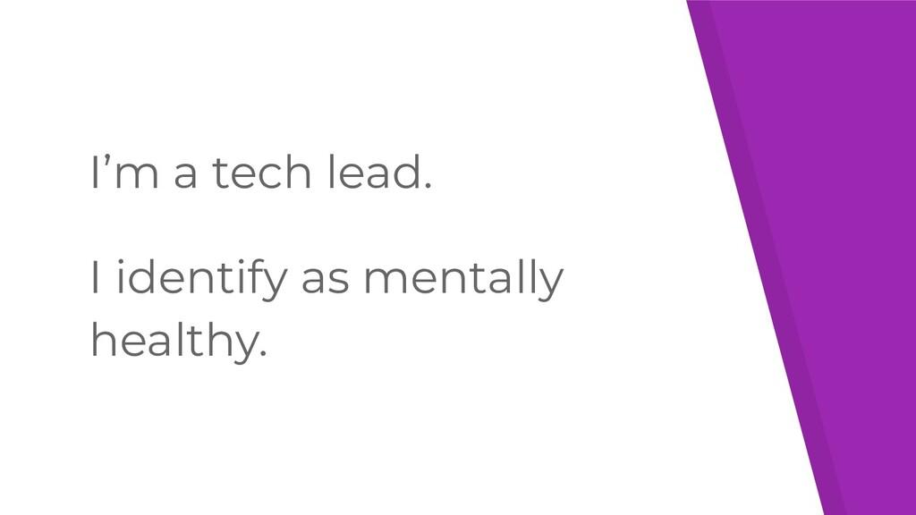 I'm a tech lead. I identify as mentally healthy.