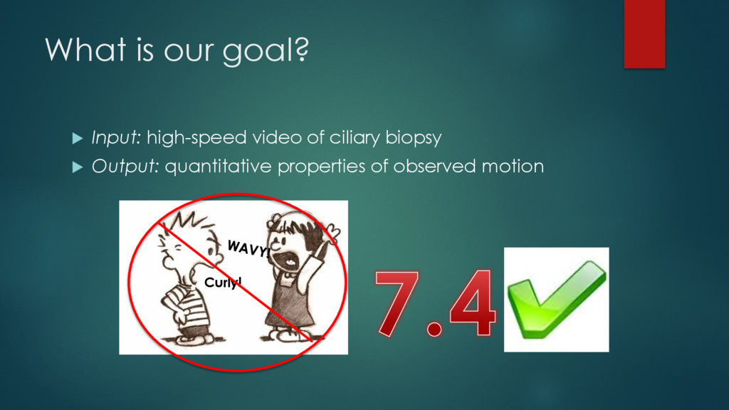 What is our goal? u Input: high-speed video of ...