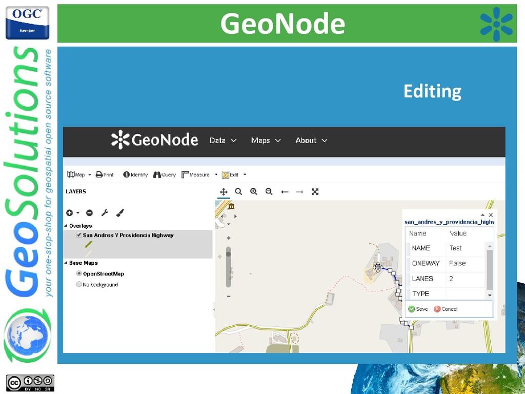 GeoNode Editing