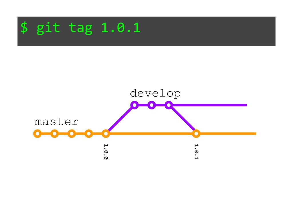 $ git tag 1.0.1 1.0.0 master develop 1.0.1
