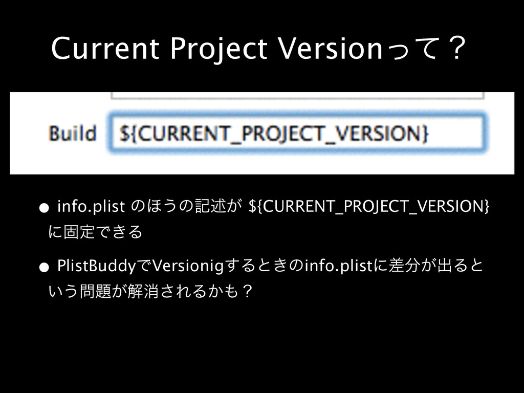 Current Project Versionͬͯʁ • info.plist ͷ΄͏ͷهड़͕...