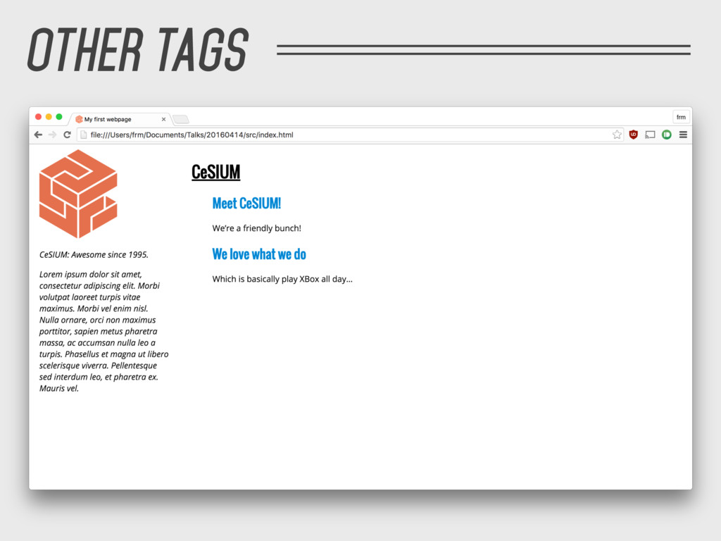 OTHER TAGS