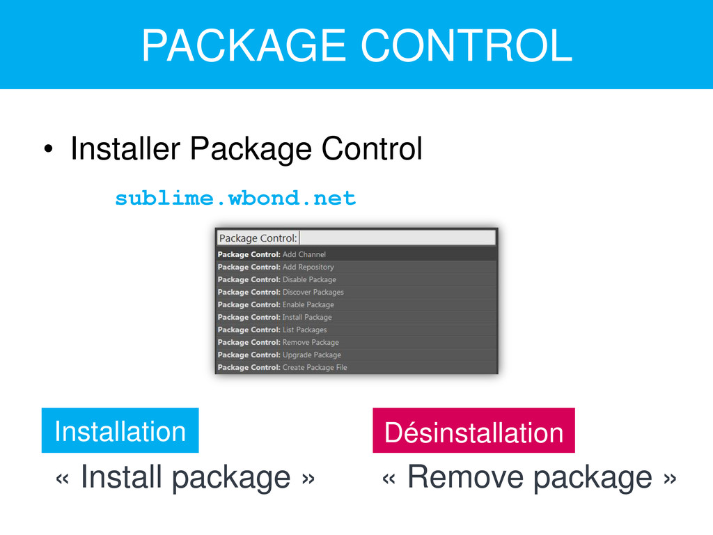 PACKAGE CONTROL • Installer Package Control sub...