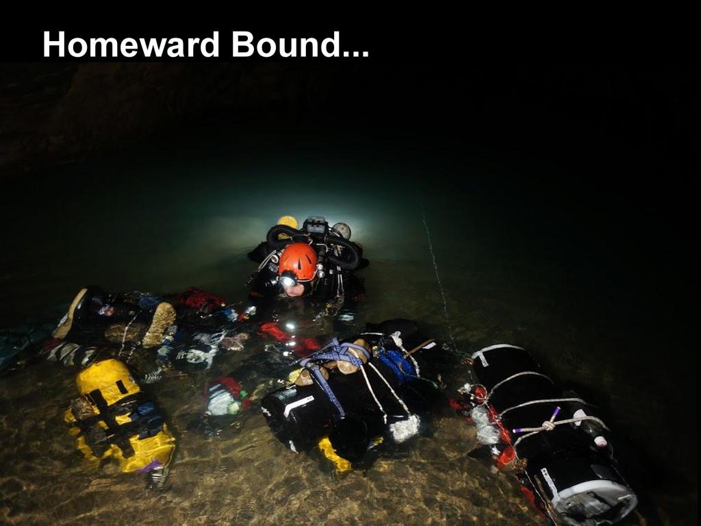 Homeward Bound...