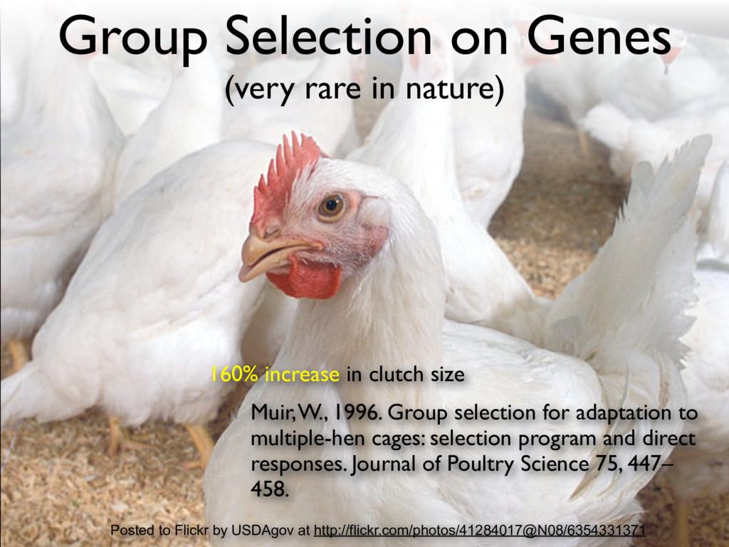 160% increase in clutch size Muir, W., 1996. Gr...