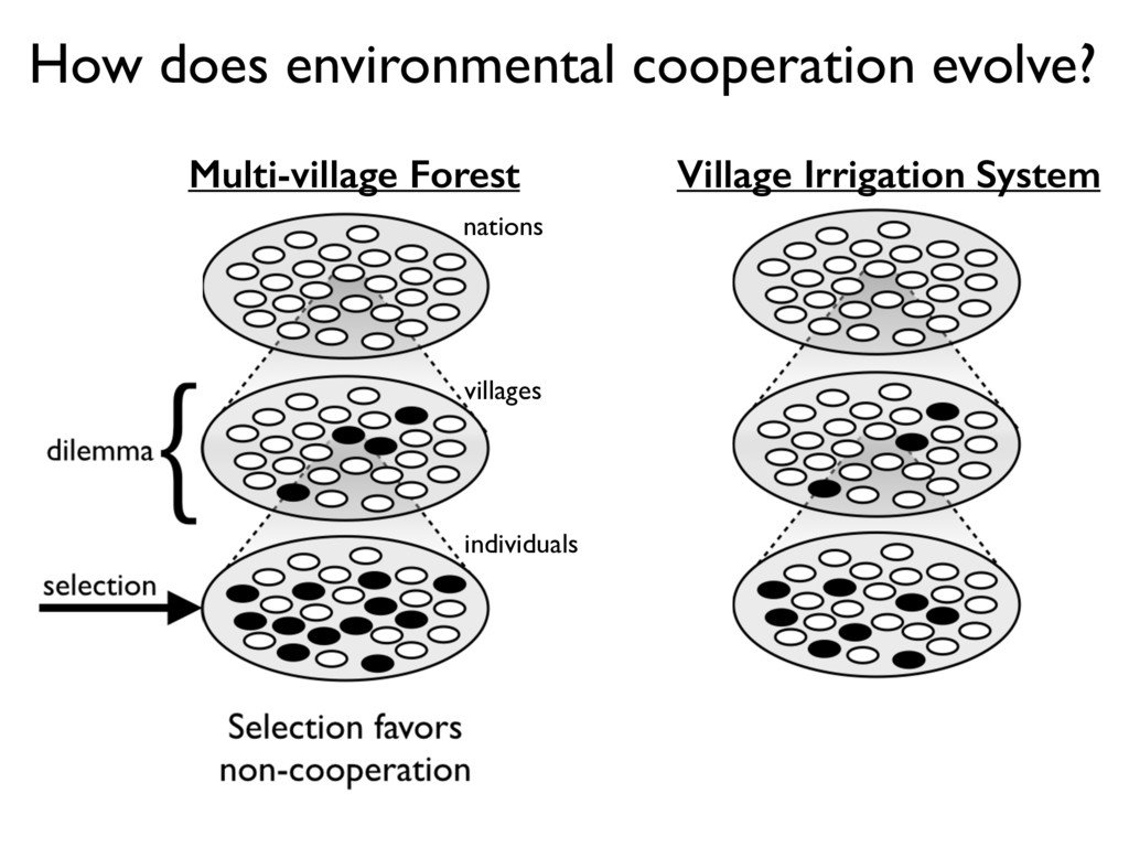 How does environmental cooperation evolve? indi...