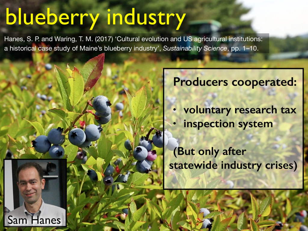 blueberry industry Sam Hanes Producers cooperat...