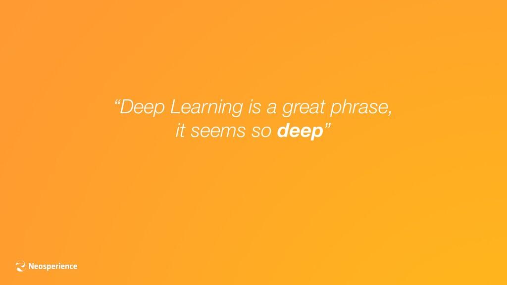 """""""Deep Learning is a great phrase, it seems so d..."""