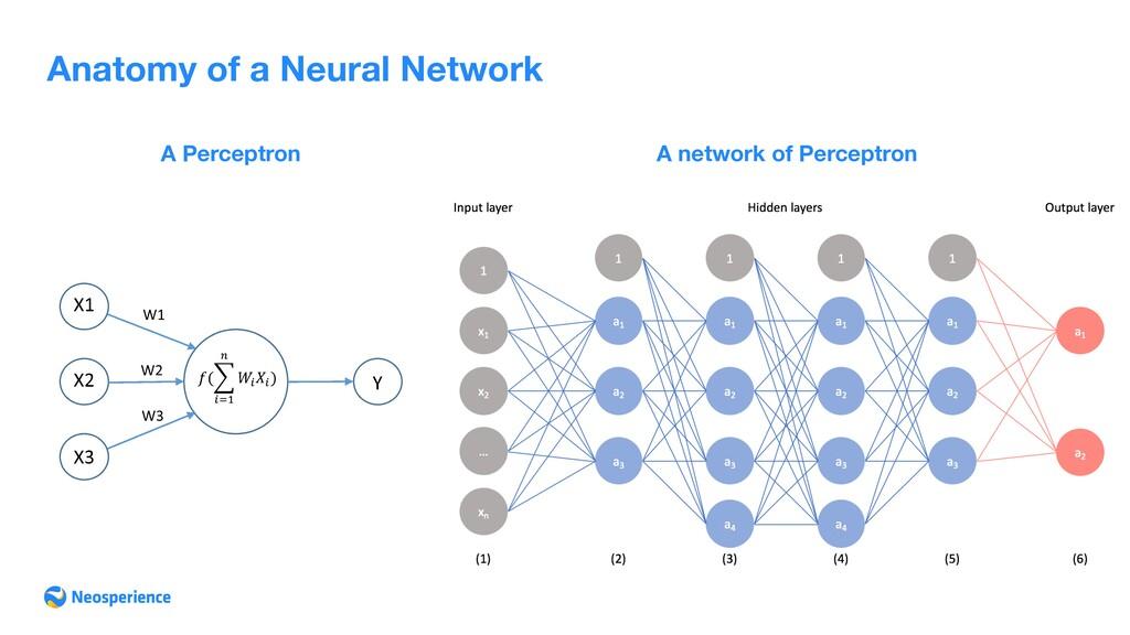 Anatomy of a Neural Network A Perceptron A netw...