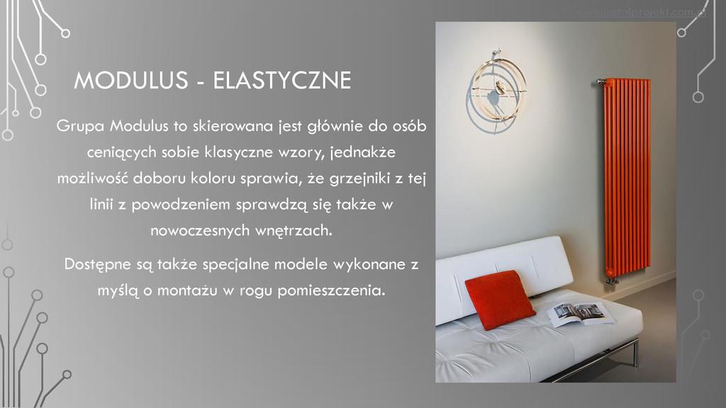 MODULUS - ELASTYCZNE Grupa Modulus to skierowan...
