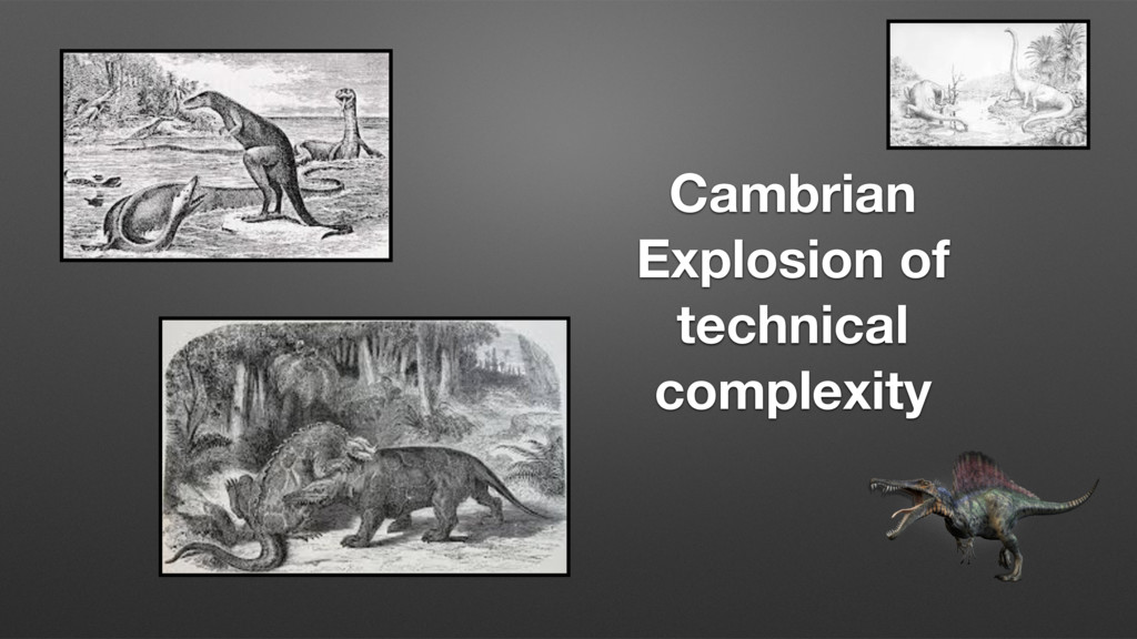 Cambrian Explosion of technical complexity