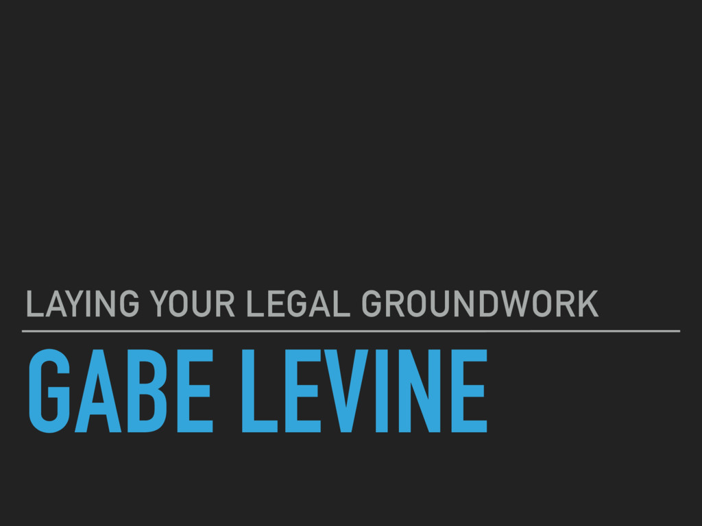 GABE LEVINE LAYING YOUR LEGAL GROUNDWORK